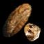 Viper King Keratin Plate